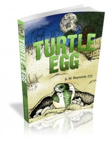 TurtleEgg-eCover