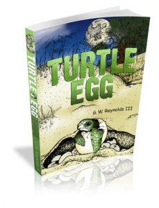 TurtleEgg-eCover